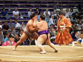 Unmissable experience: Sumo wrestling in Japan